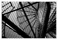 IMG_0974-1-Groß