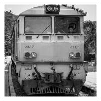 Thailand-68-1-Custom